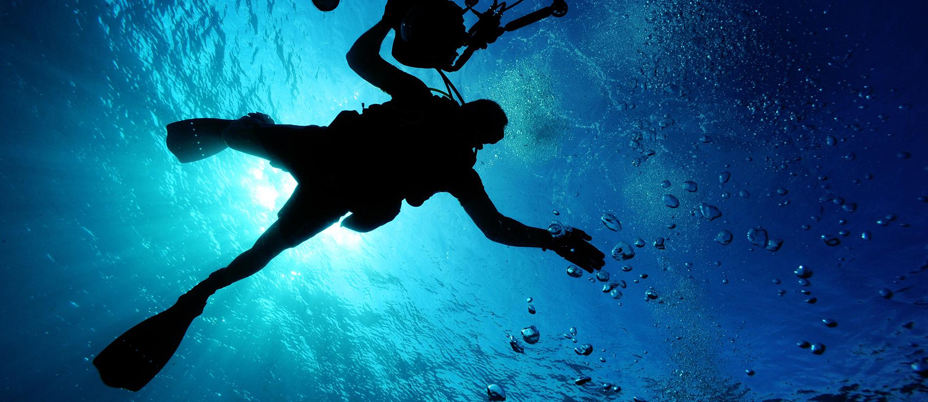 Isten hozott a víz alatti világban!